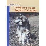 L'Intesa con i cani: I segnali calmanti