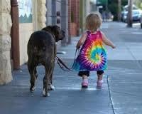 Bimba e cane insieme