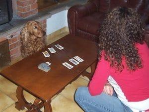 Unam gioca a carte